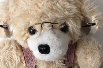 teddybaer_mit_brille_finanzexperte_martinschmid
